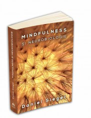 mindfulness_neurobiologia_persp