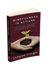 trungpa-mindfulness-in-actiune
